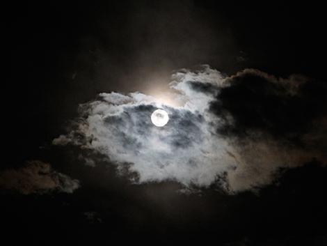 月の画像 p1_18